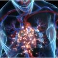 home-infarto