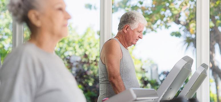 idosos exercícios atividade física