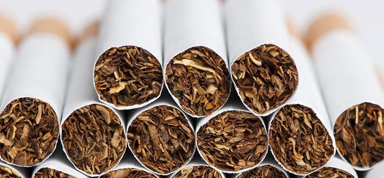 cigarros fumo tabagismo
